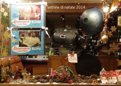 vetrine_di _natale_2014